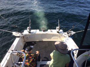 fishing tour boat